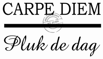 Interieursticker  Carpe diem